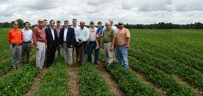 group of men posing for a picture in a peanut field